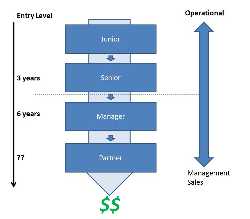 typical career path for a cpa