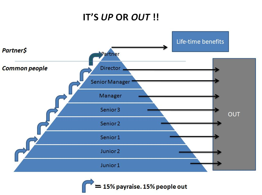 Audit and consulting firms use a PONZI scheme  | Vinhly1's Blog